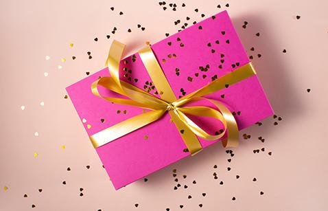 Poklon program